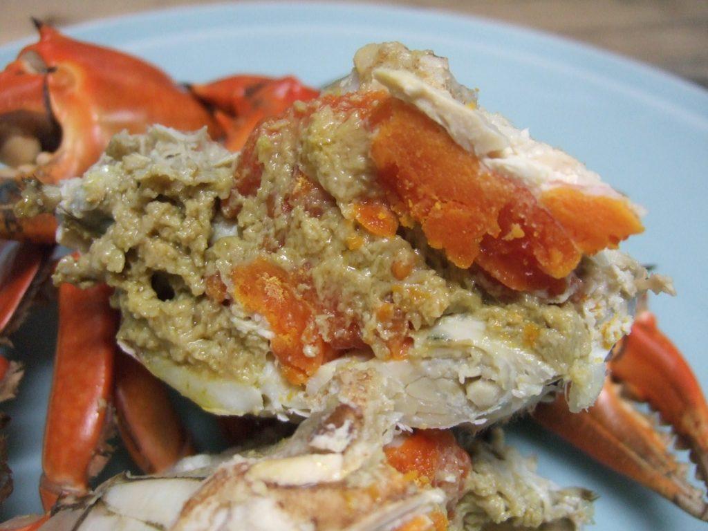 浜名湖のどうまん蟹のメスです。